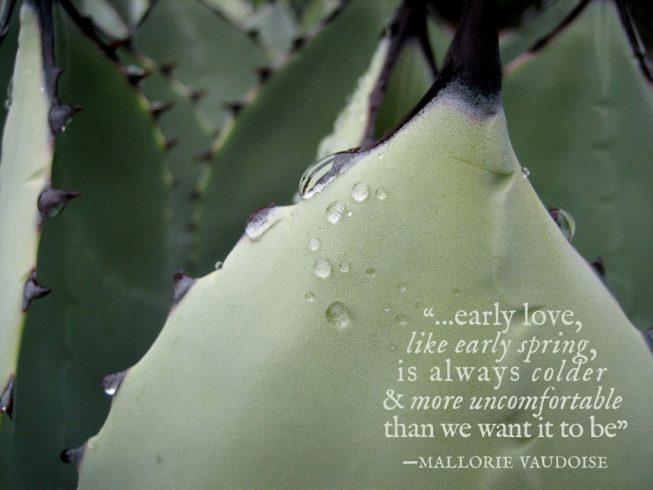 early love